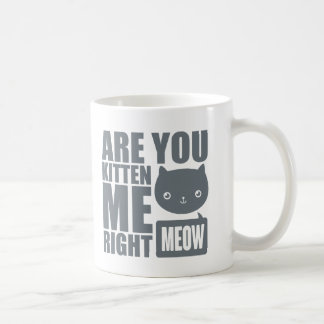 Funny Fun Are You Kitten Me Right Meow Mug