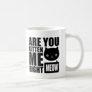 Funny Fun Are You Kitten Me Right Meow Mug Black