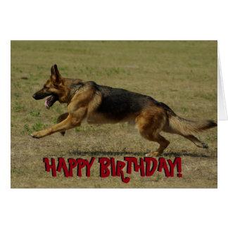 Funny German Shepherd birthday card