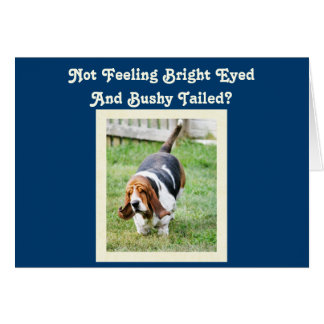 """Funny """"Get Well"""" Card w/Cute Basset Hound & Nap"""