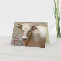Funny Get Well - Cute White Cow - Ranch or Farm Card