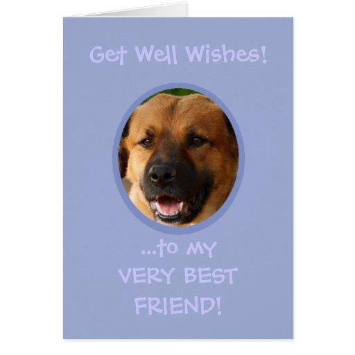 Funny Get Well From Dog Custom Photo Card