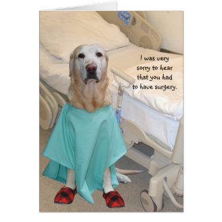 Funny Get Well Lab in Hospital Gown Greeting Card