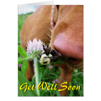 "Funny ""Get Well Soon"" card"