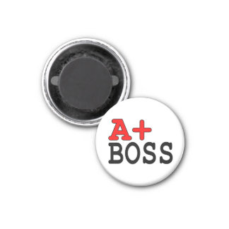 Funny Gifts for Bosses : A+ Boss Fridge Magnets