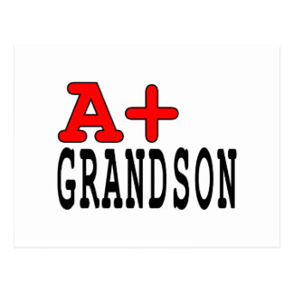 Funny Gifts for Grandsons : A+ Grandson Postcard