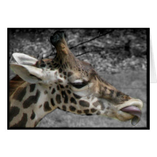 Funny Giraffe all occasion greeting note card