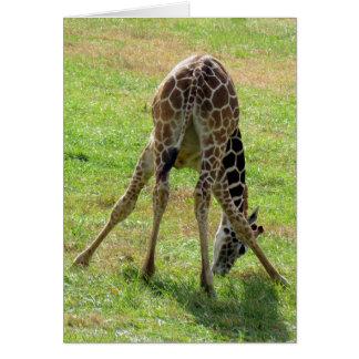 Funny Giraffe Greeting Card (blank inside)
