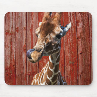 Funny giraffe on old red wood background mouse pad