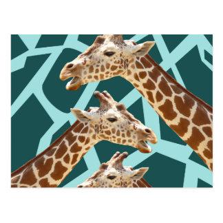 Funny Giraffe Print Teal Blue Wild Animal Patterns Postcard