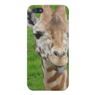 Funny Giraffe Sticking Out Tongue! iPhone 5 Cases