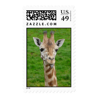 Funny Giraffe Sticking Out Tongue! Stamp