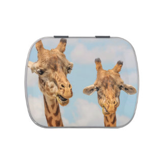 Funny Giraffes Jelly Belly Candy Tin