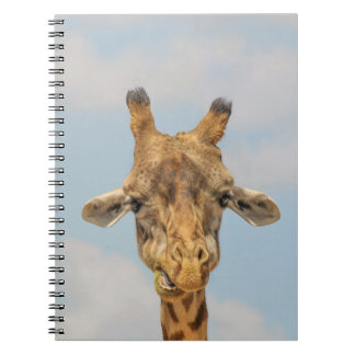 Funny Giraffes Notebook