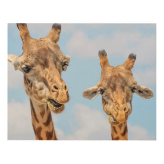 Funny Giraffes Panel Wall Art