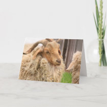 Funny Goat and Kid Father's Day Card