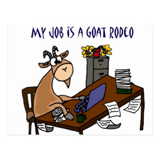 Funny Goat at Desk Goat Rodeo Job Humor Postcard