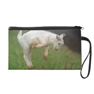 Funny Goat Baby White Goat Jumping in Pasture Wristlet Purses