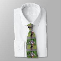 Funny Goat Necktie at Zazzle