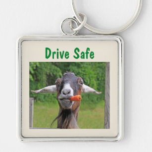 Beware Crazy Rat Lady Keyring Key Chain Funny