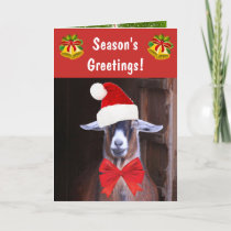 Funny Goat Season's Greetings Holiday Card