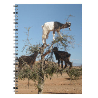 Funny goats in a tree notebook