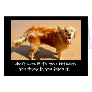 funny golden retriever card