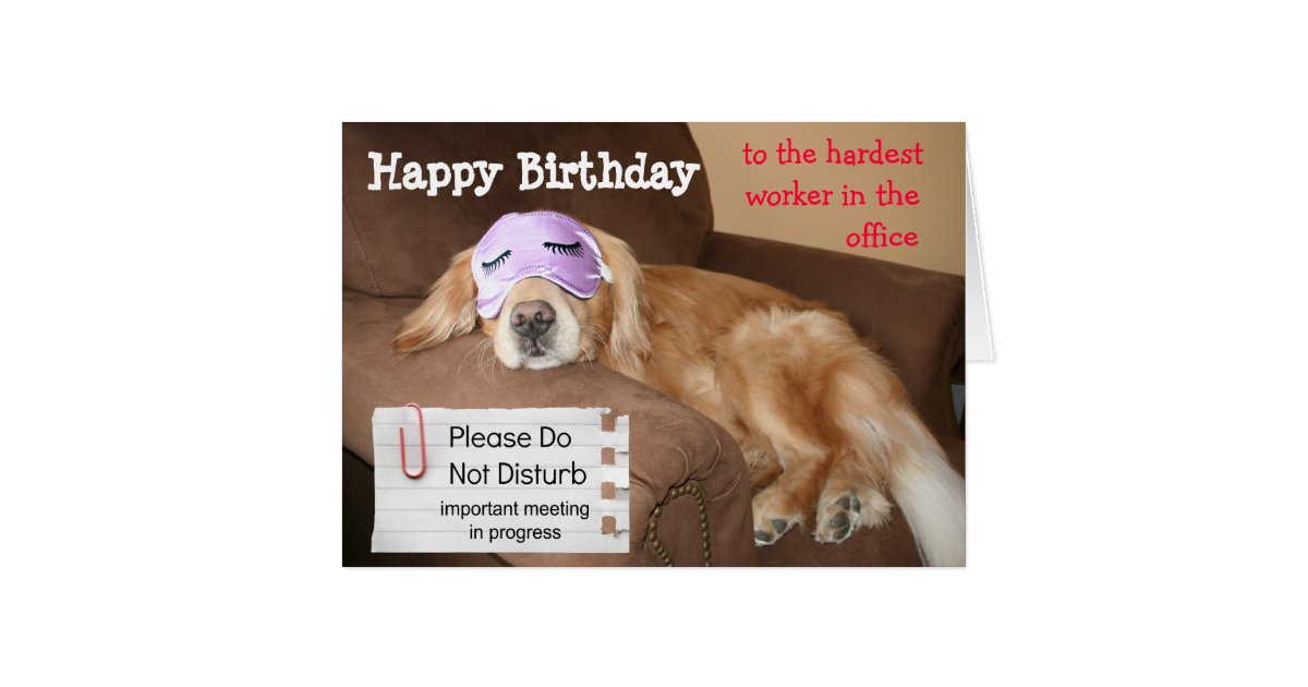 Funny Golden Retriever CoWorker Office Birthday Card ...
