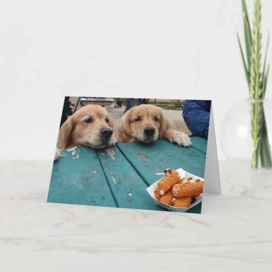 Funny Golden Retriever Dogs Birthday Wishes Card