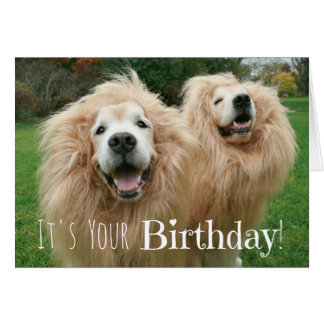 Funny Golden Retriever Lion Dogs Birthday Card