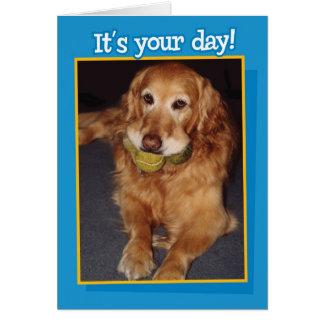 Funny Golden Retriever with Balls  Birthday Card