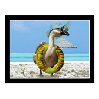 Funny Goose at the Beach Postcard