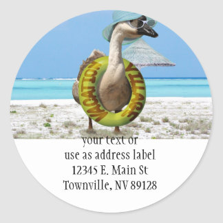 Funny Goose at the Beach Classic Round Sticker
