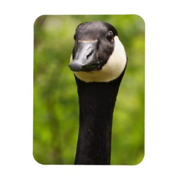 therupieshop Funny Goose Magnet