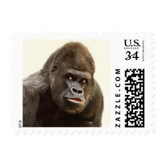 Funny Gorilla postage stamps