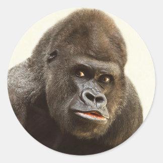 Funny Gorilla stickers