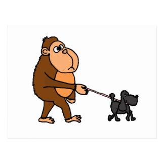Funny Gorilla Walking Black Poodle Dog Postcard