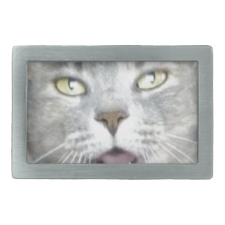 funny gray cat fluffy hilarious open mouth meow rectangular belt buckle