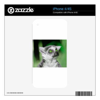 Funny Green Eyes Little Bear Decals For iPhone 4S