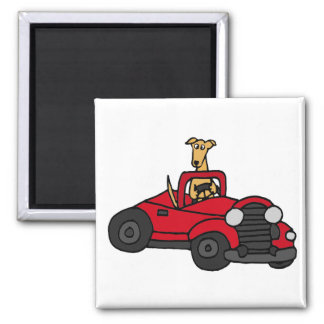 Funny Greyhound Dog Driving Red Car Magnet