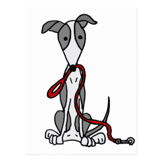Funny Greyhound Dog with Red Leash Postcard