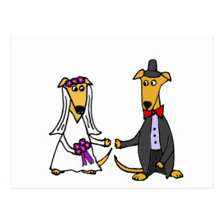 Funny Greyhound Dogs Bride and Groom Postcard