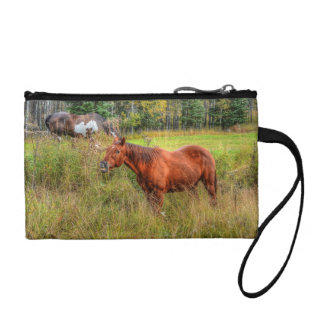 Funny Grinning Chestnut Mare & Pasture Photo Coin Purse