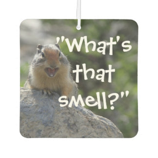 Funny Ground Squirrel Car Air Freshener