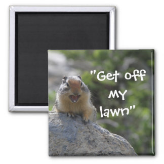 Funny Ground Squirrel Magnet