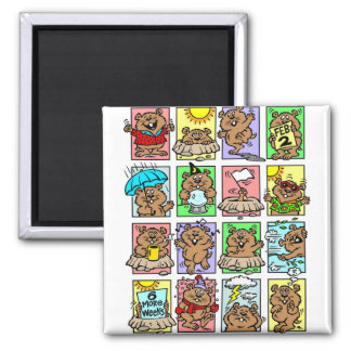 Funny Groundhog Day Cartoons 2 Inch Square Magnet