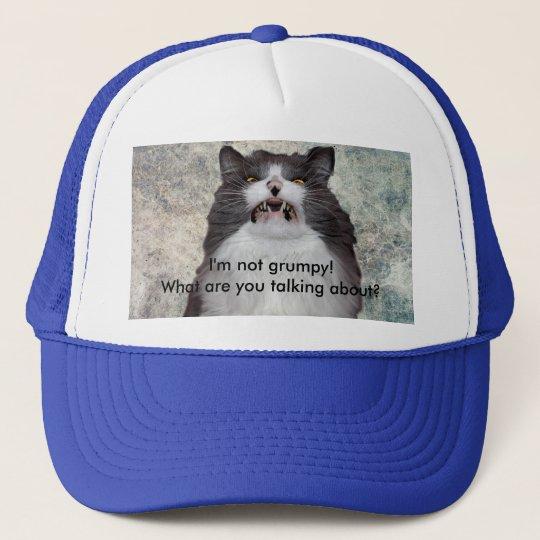 funny grumpy cat hat. Black Bedroom Furniture Sets. Home Design Ideas