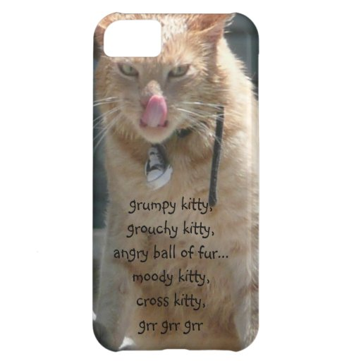Funny Grumpy Kitty iPhone Case, grr grr grr Cover For iPhone 5C