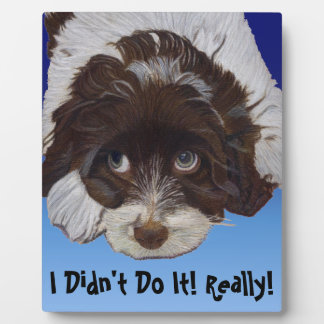 Funny Guilty Cocker Spaniel Photo Plaque