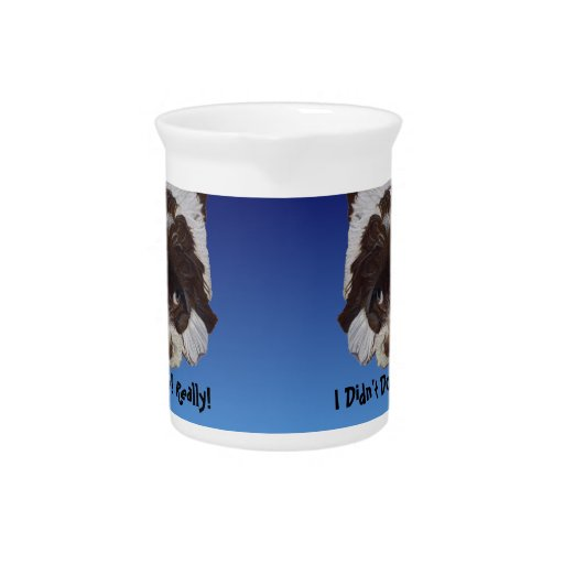 Funny Guilty Cocker Spaniel Pitcher